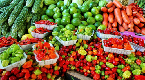 Sustainability, a key factor in the packaging of fruit and vegetable products