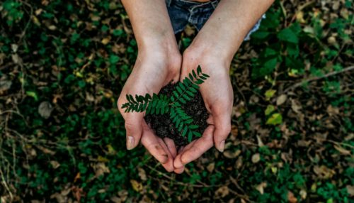Why circular economy is essential in the post-COVID-19 recovery